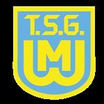TSG Weiherhammer